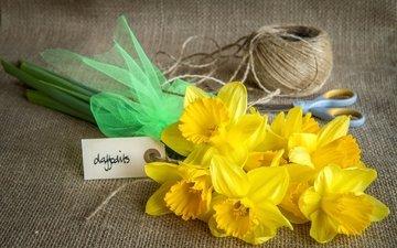 цветы, желтые, нарцисс, ножницы, нитки, мешковина