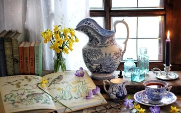 flowers, glasses, books, window, cup, tea, candle, bottle, pitcher, narcissus, still life, krokus, periwinkle