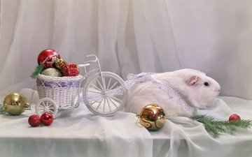 новый год, игрушки, белая, повозка, морская свинка