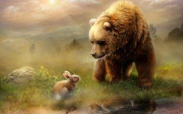 свет, вода, отражение, утро, животные, медведь, луг, заяц, встреча