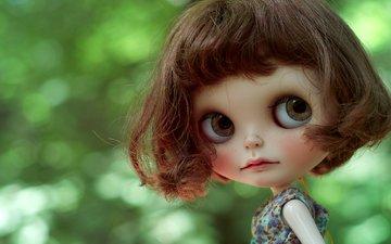 игрушка, кукла, прическа