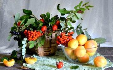 фрукты, шиповник, абрикос, ягоды, натюрморт, рябина, арония