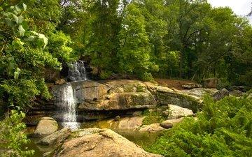 деревья, вода, камни, парк, водопад, поток