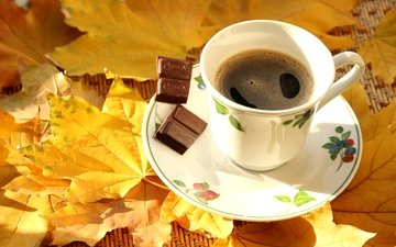 листья, осень, кофе, чашка, клен, шоколад
