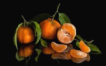 листья, отражение, фрукты, дольки, плоды, мандарины, цитрусы
