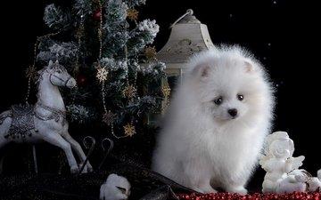 лошадь, новый год, елка, белый, щенок, ангел, фонарь, игрушки, шпиц