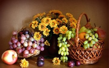 цветы, виноград, фрукты, яблоко, хризантемы, натюрморт, груша, слива