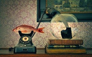 телефон, трубка, аквариум, рыба