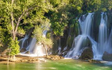 деревья, природа, лес, водопад