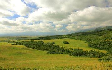 облака, горы, лес, поля, канада, луга, провинция альберта