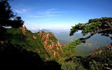 небо, деревья, горы, скалы, ущелье