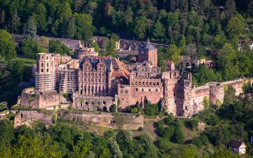 trees, forest, castle, the view from the top, germany, heidelberg castle