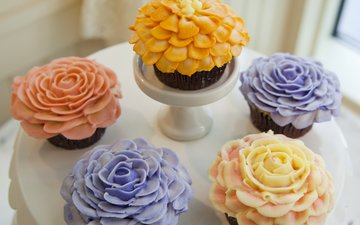 roses, sweet, plate, decoration, cakes, cupcakes