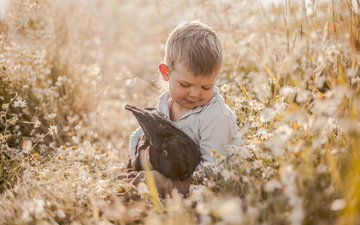 flowers, mood, meadow, chamomile, rabbit, boy, friendship, friends