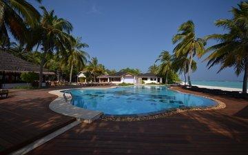 пальмы, бассейн, океан, курорт