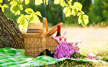 цветы, трава, солнце, природа, дерево, листья, ветки, лето, поляна, фотоаппарат, букет, корзина, вино, бутылки, шляпа, пикник, скатерть