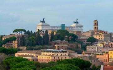 деревья, панорама, дома, италия, рим, витториано