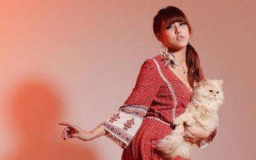 фон, платье, поза, кот, кошка, модель, азиатка, персидская кошка