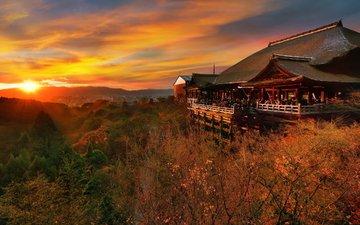 небо, деревья, солнце, холмы, закат, люди, осень, пагода, япония, кустарники, туристы