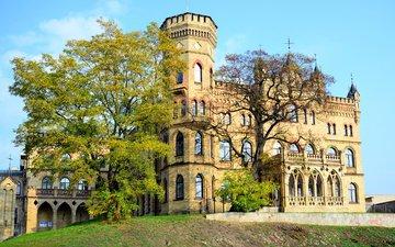 деревья, замок, дворец, вильнюс, литва, lithuanian architects union