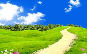 небо, цветы, трава, облака, деревья, солнце, поле, лето, тропинка, луг