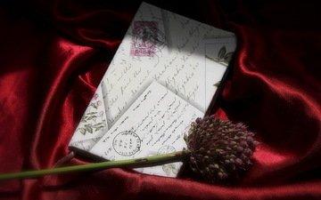 background, flower, letter
