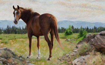 лошадь, природа, картина, пейзаж, графика, конь, живопись