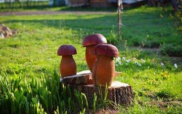 лето, грибы, пень, пенек, грибочки