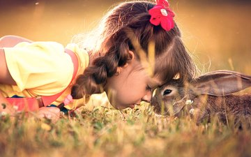 grass, girl, child, rabbit, animal, friendship, hare