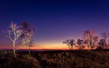небо, деревья, вечер, закат, великобритания, peak district