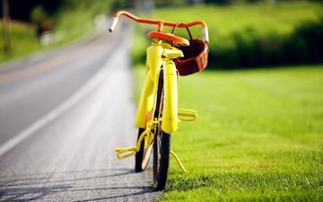 road, nature, bike