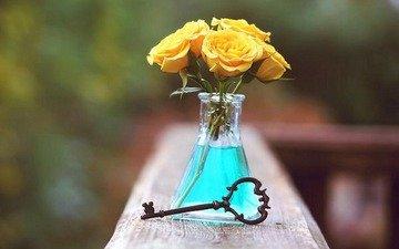 розы, ключ, бутылка, роз, бутылек, жёлтые розы, клавиша