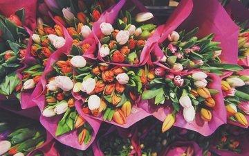 цветы, тюльпаны, букеты