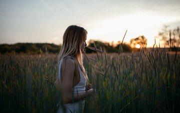 girl, field, dawn, face, walk, brittney