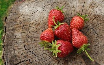 природа, красная, клубника, ягоды, пень