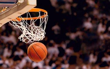 игра, спорт, мяч, баскетбол