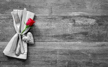 роза, сердце, любовь, романтик, дерева, влюбленная, сердечка