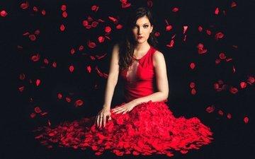 девушка, фон, платье, лепестки, лицо, красное, marine