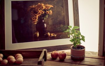 apples, plant, eggs, frame, photo, still life, pot