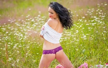 flowers, pose, ass, panties, meadow, chamomile, hair, katie