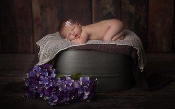 цветы, сон, дети, спит, ребенок, младенец, композиция, новорожденный, дитя