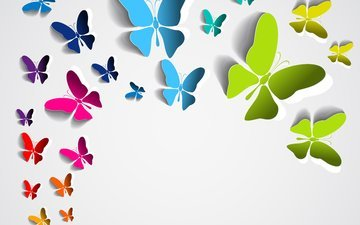 background, butterfly, colored