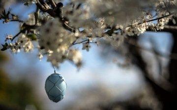garden, spring, easter, egg