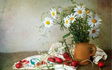 лето, ромашки, овощи, кувшин, натюрморт, редис