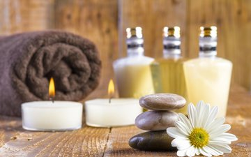 candles, stones, flower, daisy, board, towel, spa, bottles, bottle