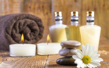 candles, stones, flower, daisy, board, towel, spa, bottles, bottle