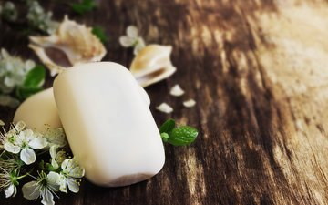 flowers, board, shell, spa, soap