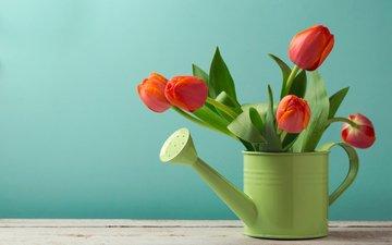 цветы, фон, красные, стол, букет, тюльпаны, зеленая, лейка