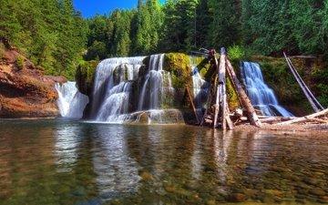 деревья, река, камни, зелень, лес, водопад, вашингтон, сша, мох, бревна, солнечно, lewis river