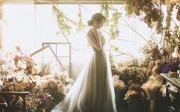 свет, цветы, девушка, платье, профиль, волосы, лицо, азиатка, букеты
